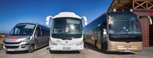 autobusy mwbus